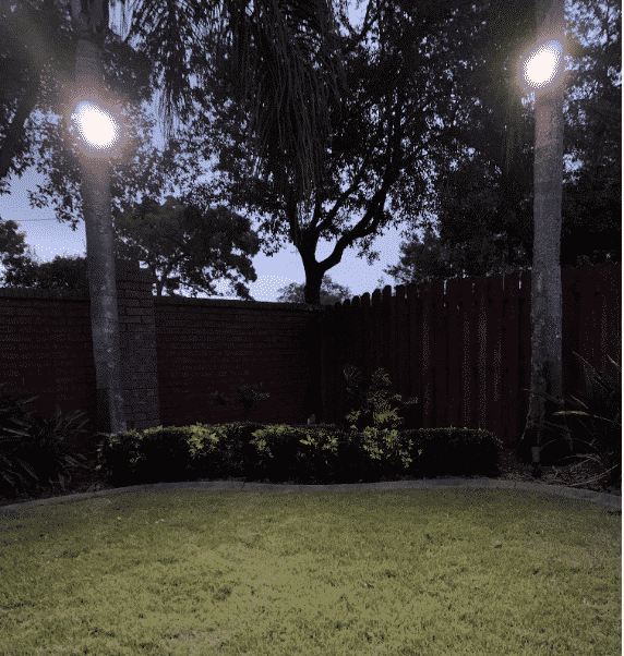 Solar Powered Motion Activated Palm Tree Lights! 2