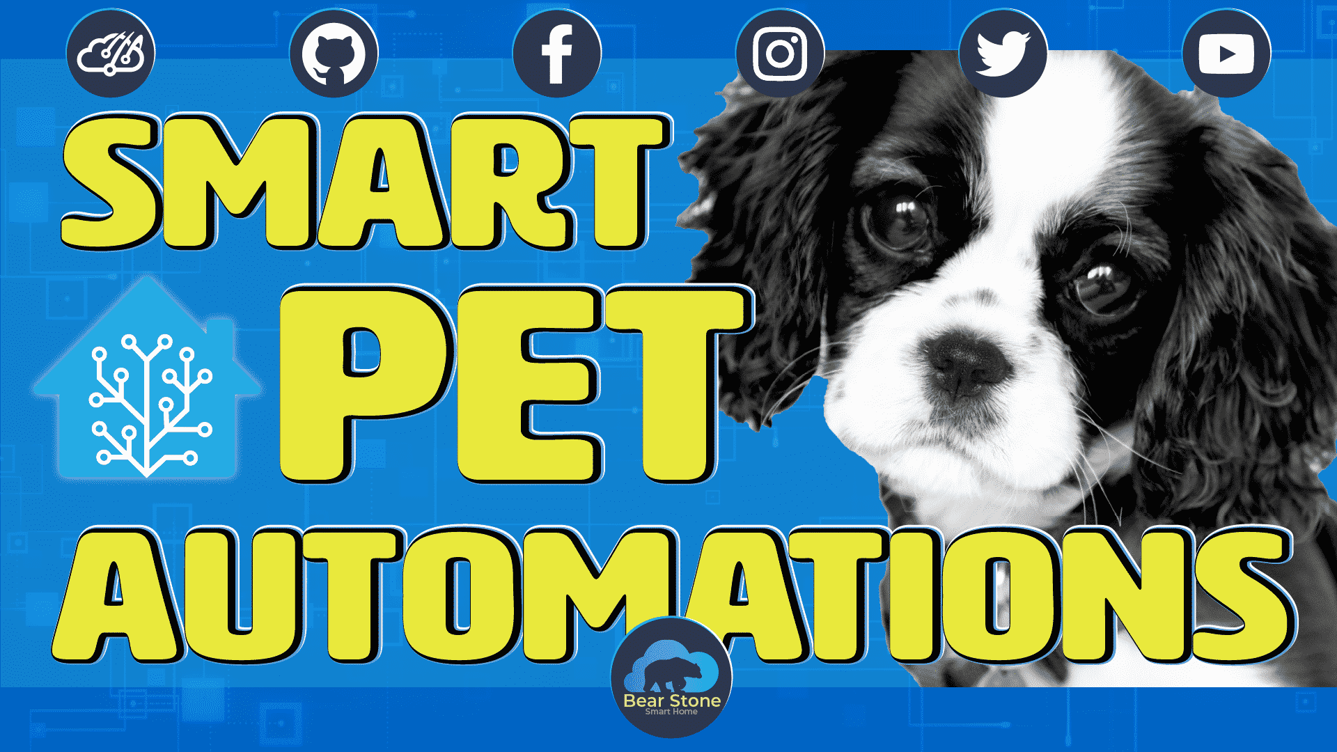 Home Assistant Pet Automation Example 1